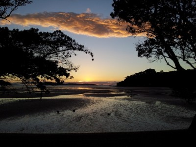 Shelly Beach - Coromandel