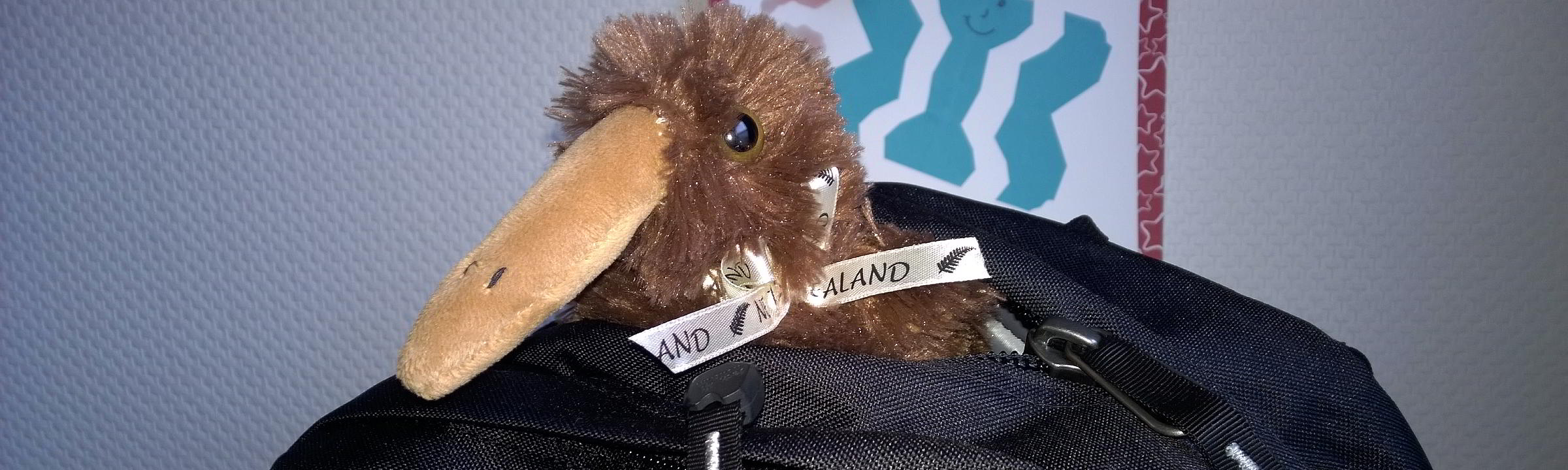 Ein Kiwi auf Reisen