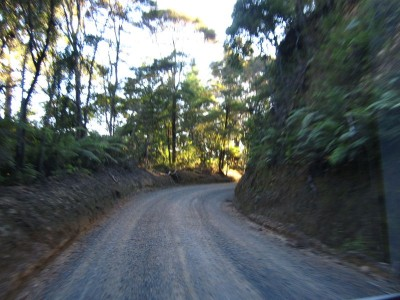 Gravel Road nach Russel, Bay of Islands