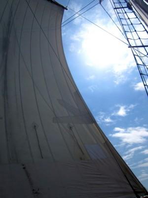 Segel gesetzt und ab in die Bay of Islands