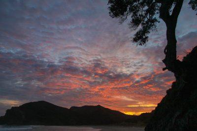 Sonnenaufgang am Cape Reinga