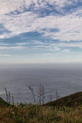 Impressionen von Cape Reinga