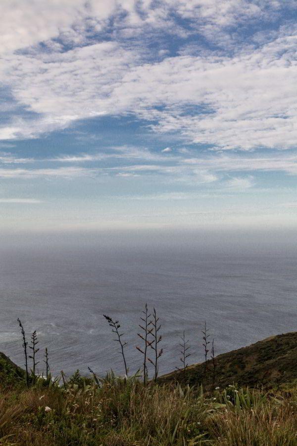 Cape_Reinga-4