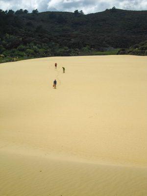 Te Paki Sanddünen auf Neuseeland