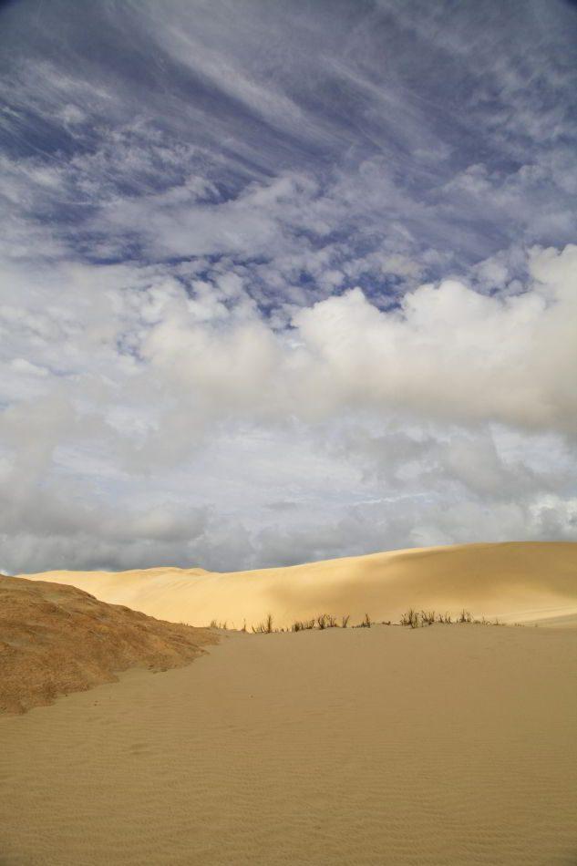 Te_Paki_Sand_Dunes_09