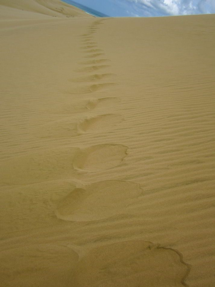 Te_Paki_Sand_Dunes_15
