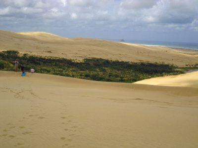 Te_Paki_Sand_Dunes_20