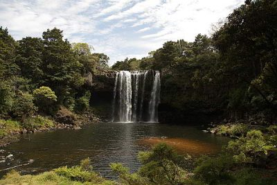 Rainbow Falls in Kerikeri
