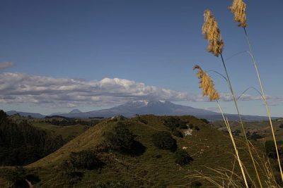 Mount Taranaki wie meist in Wolken