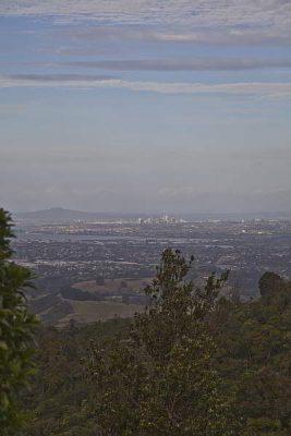 Auckland gesehen vom Scenic Drive