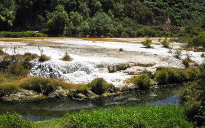 weiße Kalkterassen - Waimangu Volcanic Valley