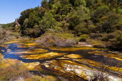 Waimangu River im Flussbett - Waimangu Volcanic Valley