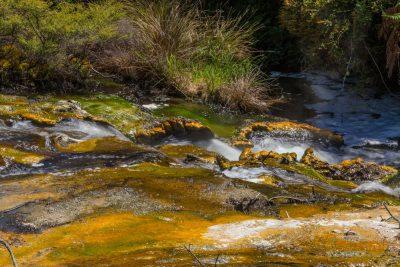 klares Wasser mit rotem Untergrund - Waimangu Volcanic Valley