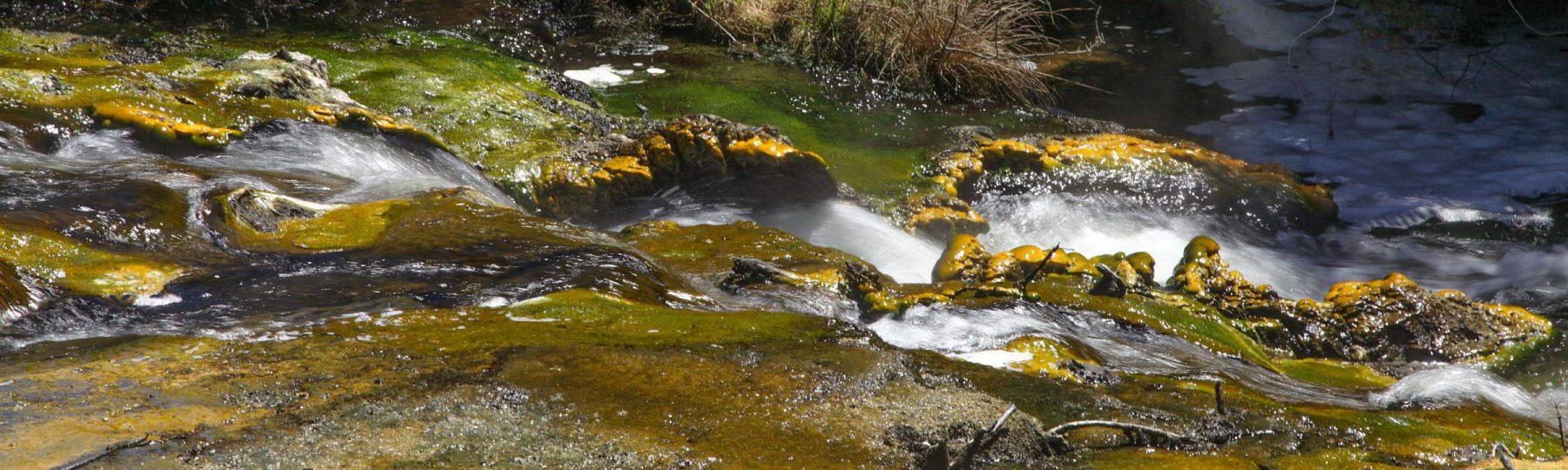 Urzeitenfluss im Volcanic Valley Neuseeland