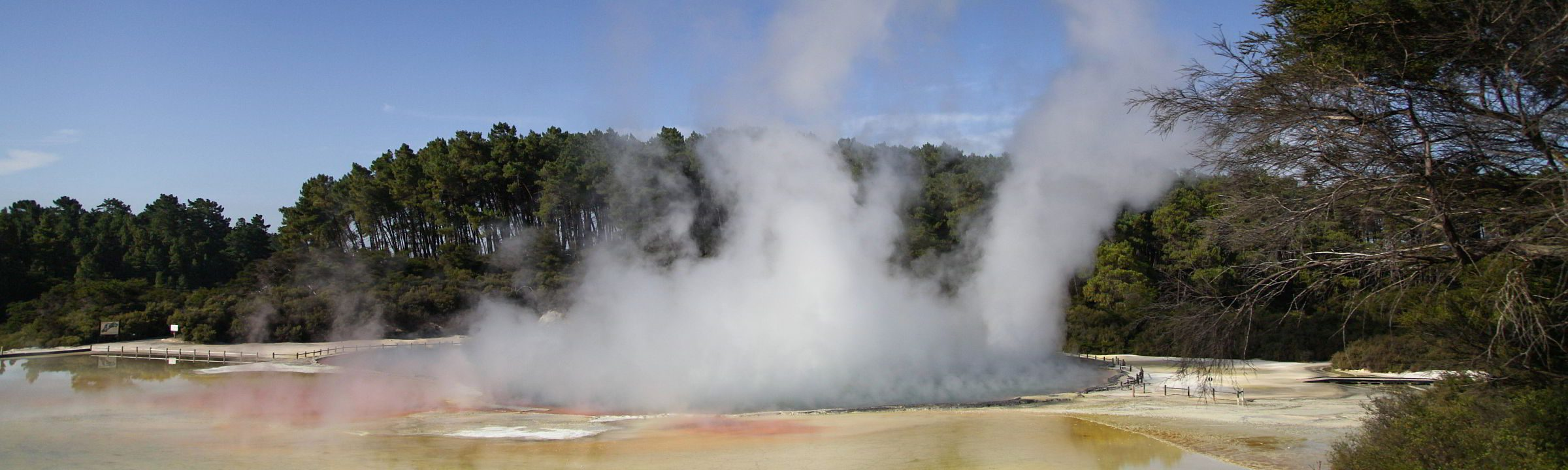 Heißer Dampf steigt in Wai-o-Tapu aus dem Erdinneren auf