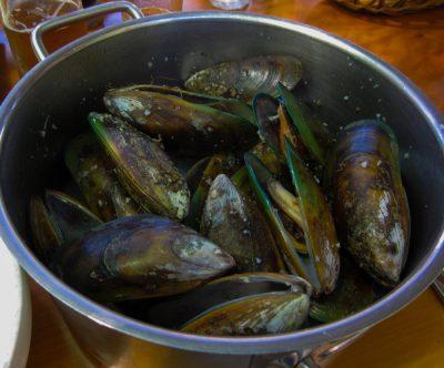 Green Lipped Mussels dazu ein Chardonnay