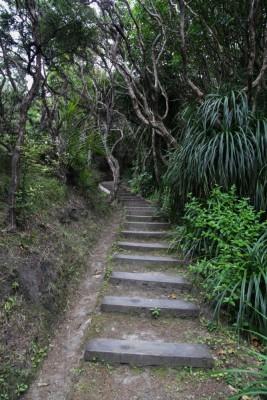 Treppensteigen zum Leuchtturm vom East Cape