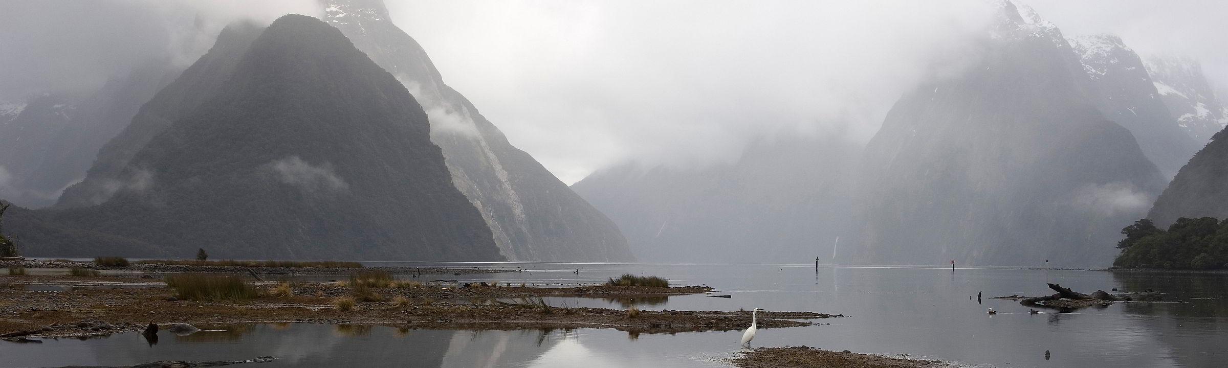 Aussicht auf den Milford Sound in Fiordland Neuseeland