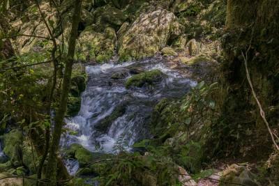 neuseeland-erleben-info-geheimtipp-te-puna-o-riuwaka-bach