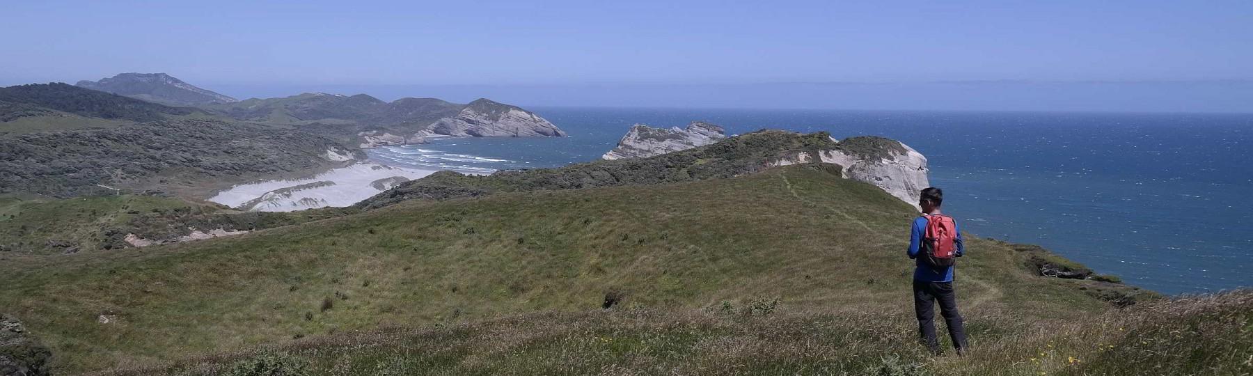 Blick auf Wharariki Beach