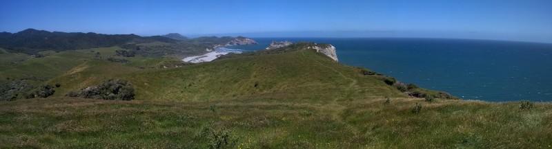 Blick über die grünen Hügel zur Tasman See