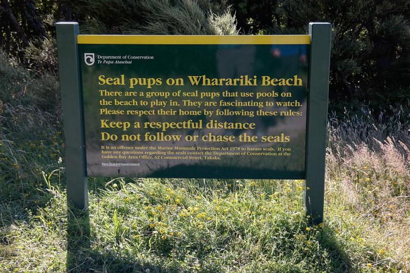 Schild mit Hinweisen zu Robben
