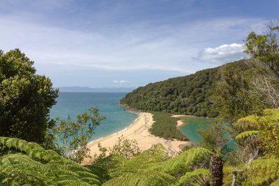 Eine Sandbank im Abel Tasman National Park