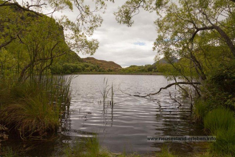 Diamond Lake vom Ufer aus gesehen