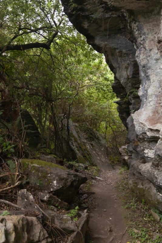 Rocky-Mountain_Neuseeland_erleben_info_05