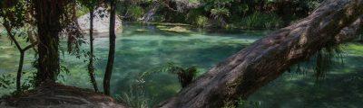 Tarawera Falls - ein Wasserfall, der aus dem Nichts entspringt