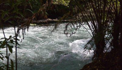 Blaues Wasser im Fluß und grüne Natur