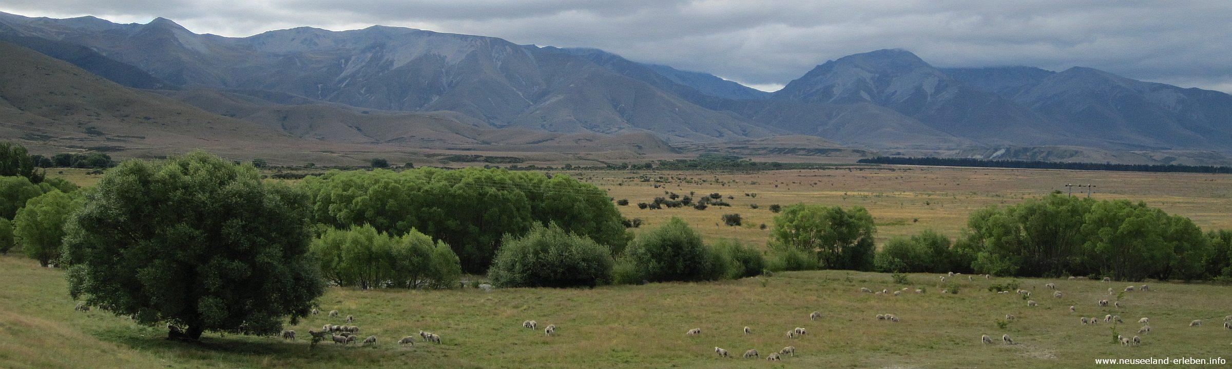 45 Tage Neuseeland – So viele Ziele, so wenig Zeit