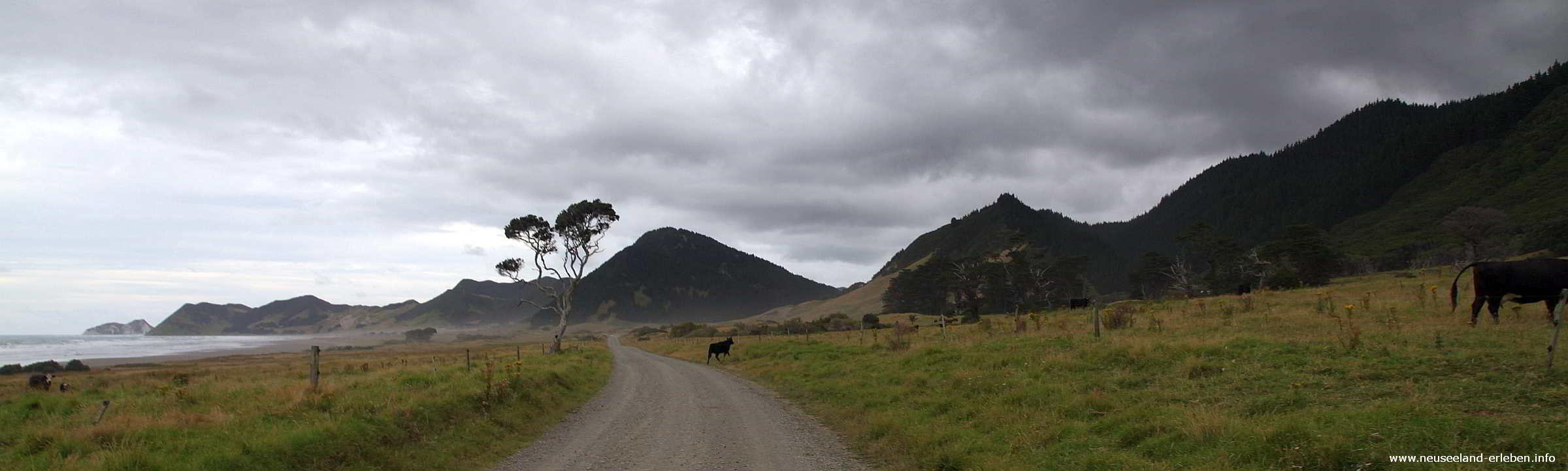 Auf dem Weg zum East Cape