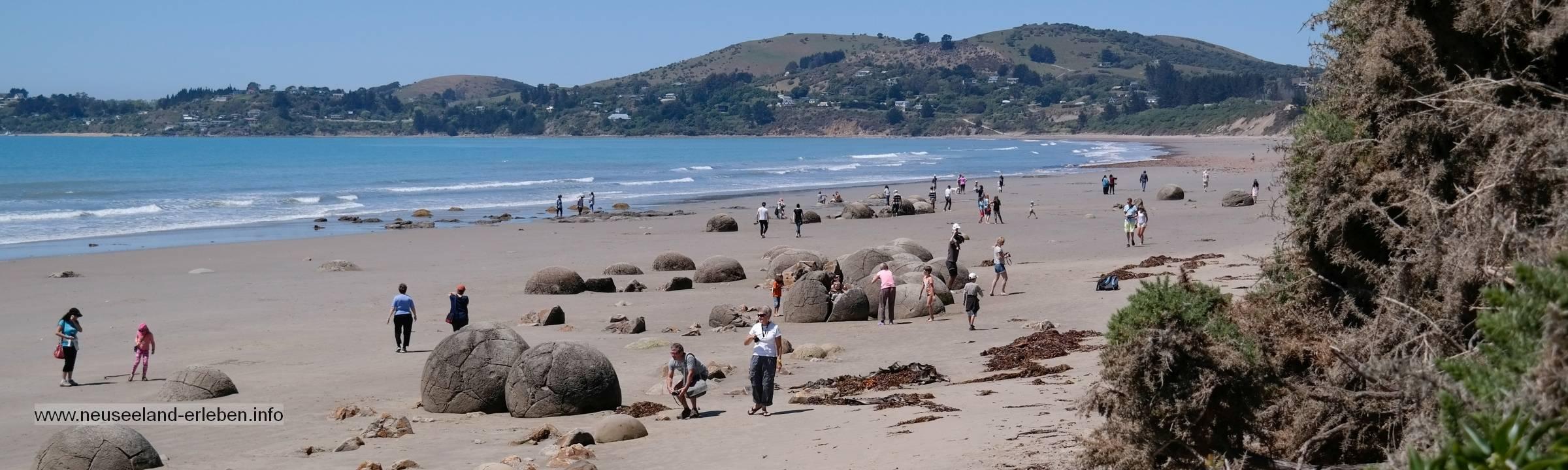 Die schönsten Rundungen Neuseelands – Moeraki Boulders