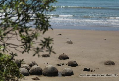 Strandabschnitt mit den Moeraki Boulders.