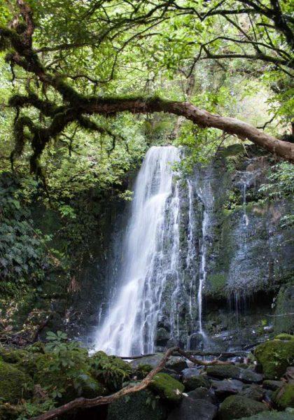 Matai Falls oder auch Horseshoe Falls genannt