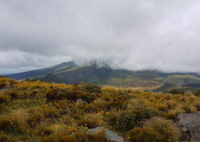 Die unteren Umrisse des Vulkans sind zu sehen, doch in seiner Gesamtheit wollte er sich an diesem Tag nicht zeigen.