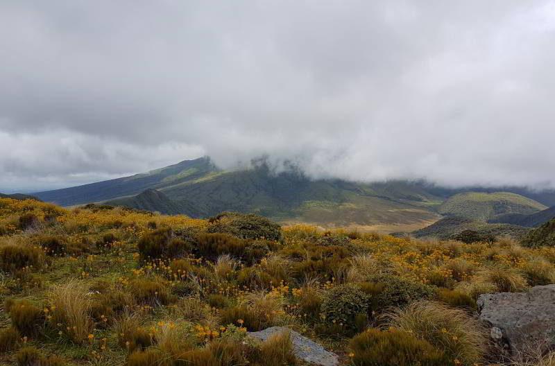 Mount Taranaki liegt in den Wolken