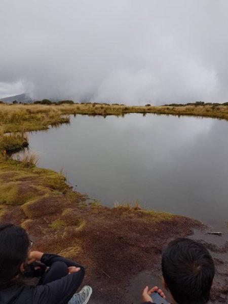 Zwei Personen warten auf einen freien Blick auf den Mount Taranaki