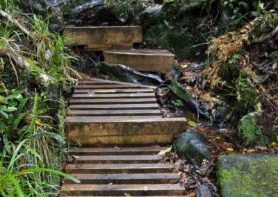 Feste Stufen führen hinauf zum Aussichtspunkt.