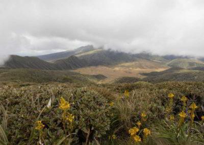 Oben auf dem Plateau angekommen gibt es einen 360° Rundumblick auf die Landschaft