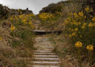Nach dem Spiegelsee kann man die Wanderung fortsetzen oder man kehrt um und geht den gleichen Weg zurück.