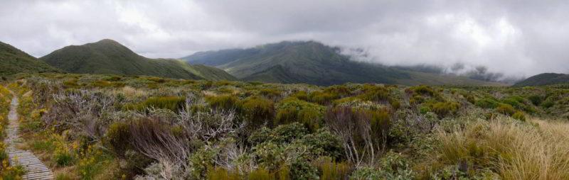 Mount Taranaki versteckt sich in Wolken