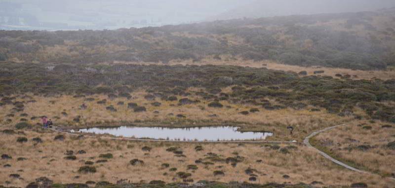 See am Mangorei Track in dem sich Mount Taranaki spiegeln soll.