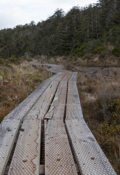 Ein hölzerner Weg führt über ein Moorgebiet