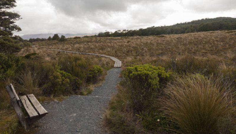 Eine Holzbank auf freiem Feld, mit dem Ausblick auf ein kleines Moorgebiet