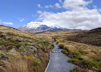Es blüht an allen Ecken und Kanten - ein wirklich schöner Wanderweg!