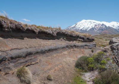 Die Sedimentschichten in der Nahansicht - im Hintergrund der Mount Ruapehu.