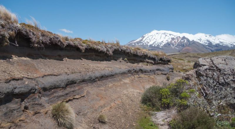 Die Sedimentschichten des Tongariro National Park