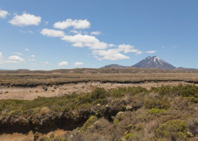 Mount Ngauruhoe mit einer weiten Landschaft im Vordergrund